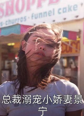 总裁溺宠小娇妻景宁